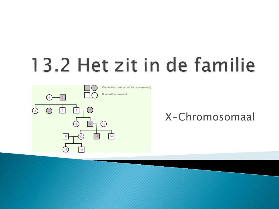 P (parent) F1 (1e generatie) Geslachtscellen F2 (2e generatie) AA aa Aa A A A A A a a a a a X X óf