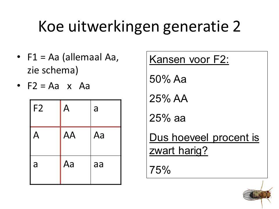 Koe uitwerkingen generatie 2 F1 = Aa (allemaal Aa, zie schema) F2 = Aa x Aa F2Aa AAAAa a aa Kansen voor F2: 50% Aa 25% AA 25% aa Dus hoeveel procent is zwart harig.