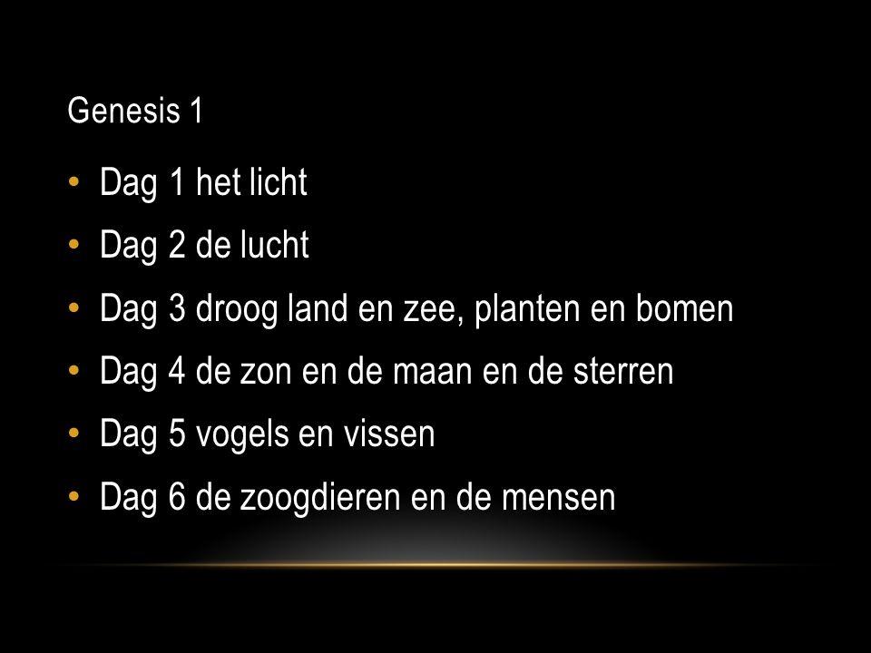 Genesis 1 Dag 1 het licht Dag 2 de lucht Dag 3 droog land en zee, planten en bomen Dag 4 de zon en de maan en de sterren Dag 5 vogels en vissen Dag 6