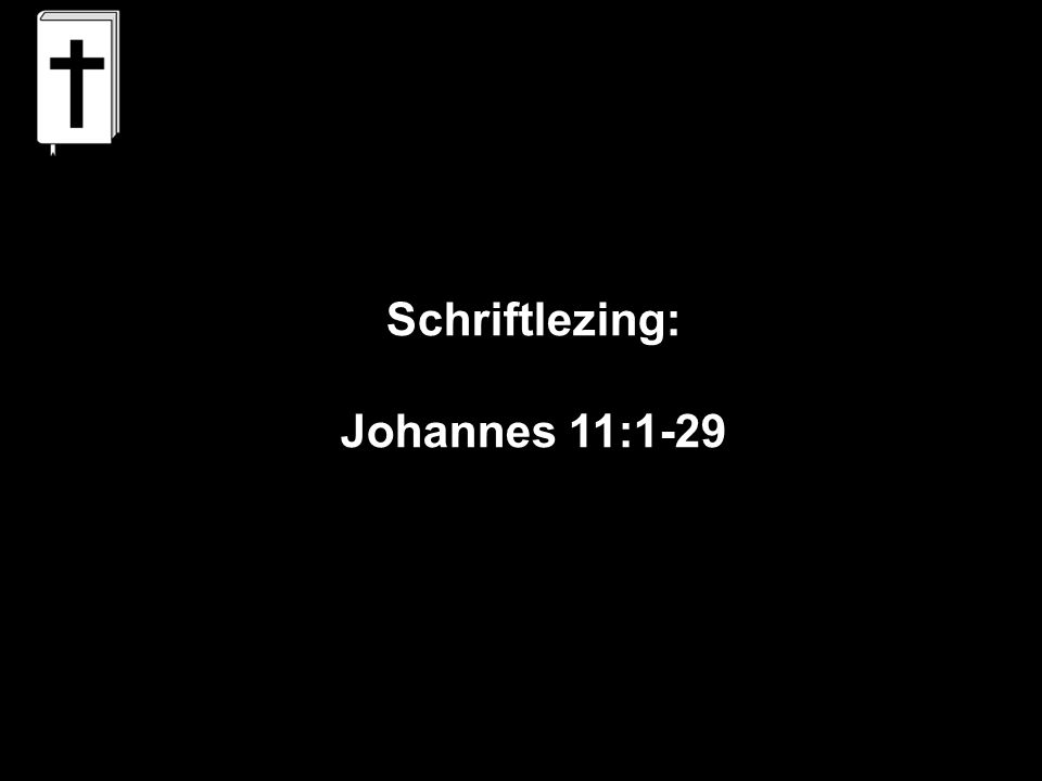 Schriftlezing: Johannes 11:1-29