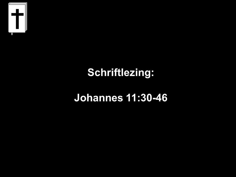 Schriftlezing: Johannes 11:30-46