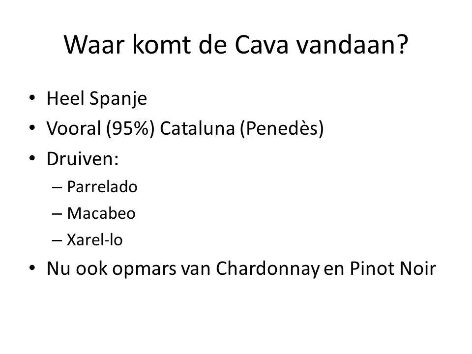 Waar komt de Cava vandaan.