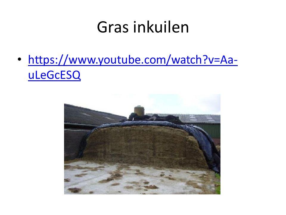 Trouwen met het varken Jopie http://www.npo.nl/2doc-trouwen-met-het- varken-jopie/05-10-2015/VPWON_1236441 http://www.npo.nl/2doc-trouwen-met-het- varken-jopie/05-10-2015/VPWON_1236441