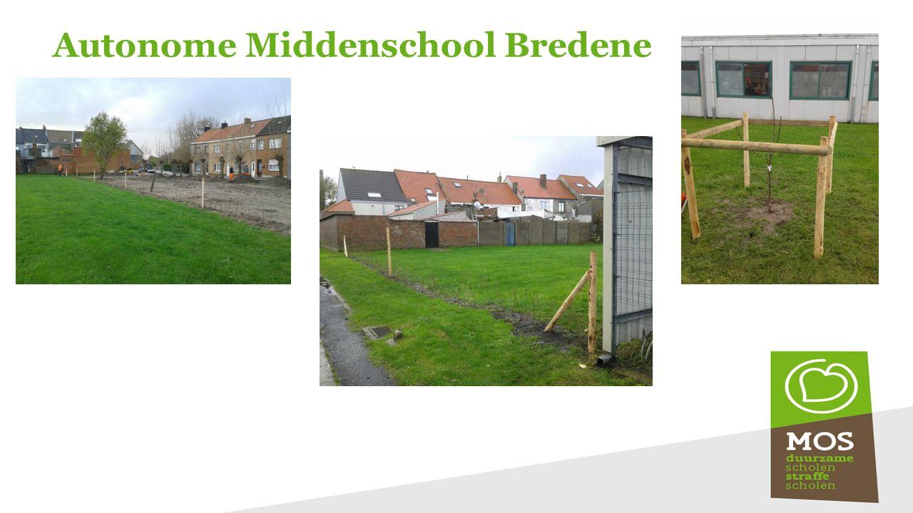 Autonome Middenschool Bredene