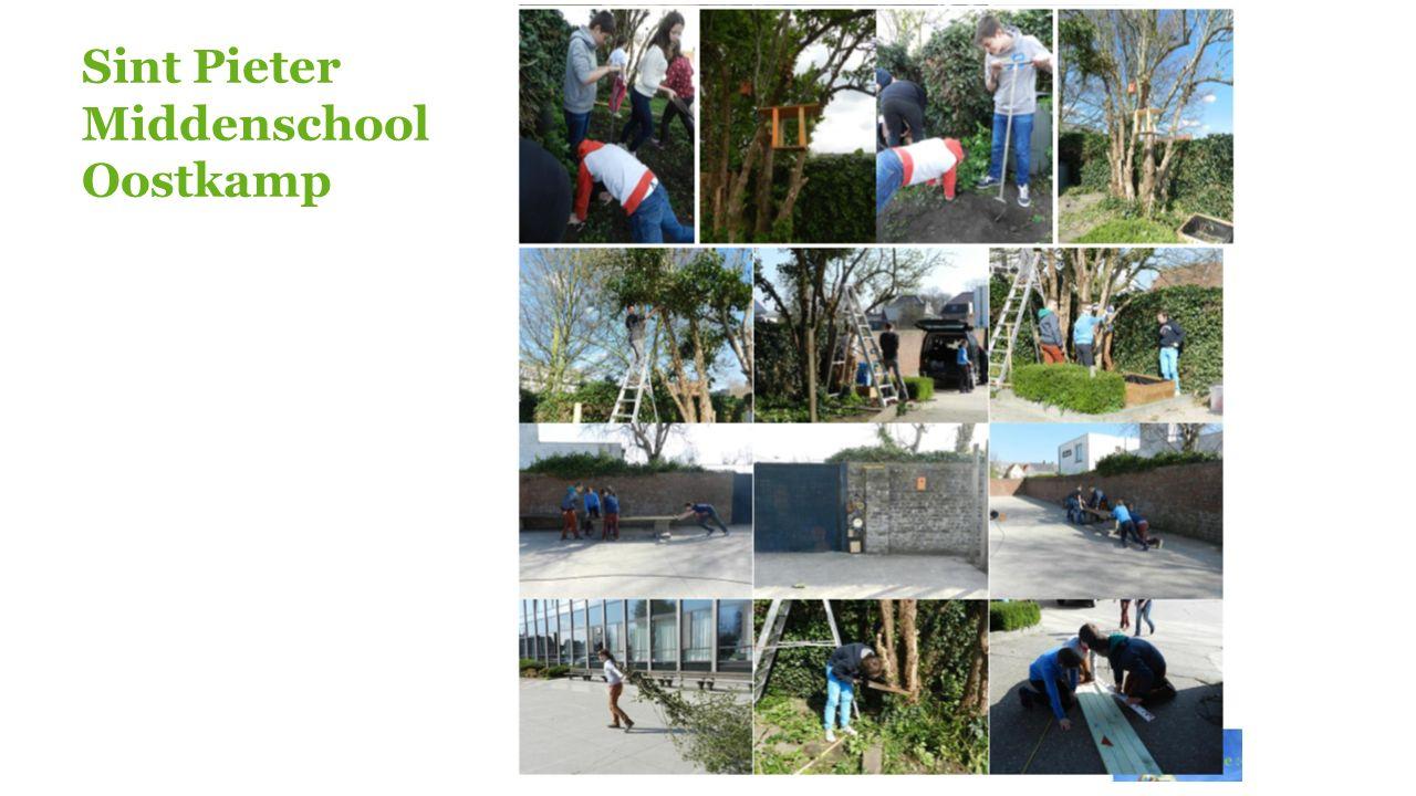 Sint Pieter Middenschool Oostkamp