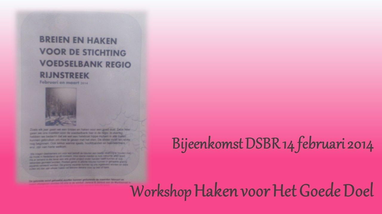 Bijeenkomst DSBR 14 februari 2014 Workshop Haken voor Het Goede Doel