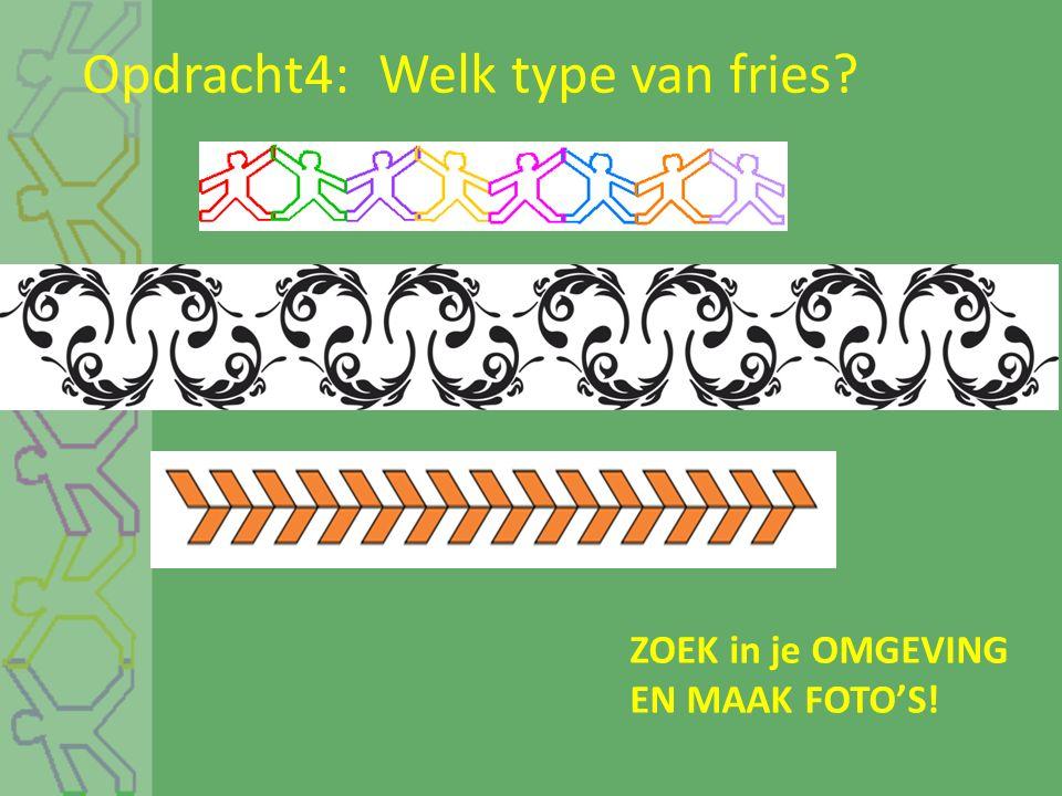 Opdracht4: Welk type van fries? ZOEK in je OMGEVING EN MAAK FOTO'S!