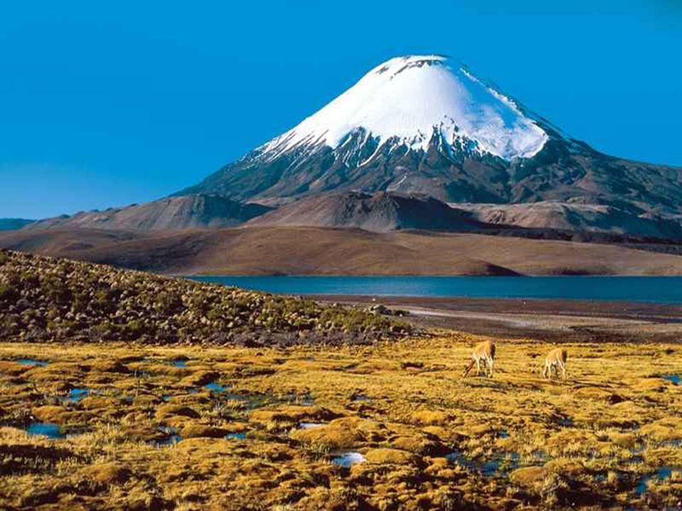 Met z'n bergen, het majestueuse Andes gebergte, rivieren en meren, z'n wijdse velden en oceaankust, z'n grote steden, vormt Chili 'n buitengewoon land