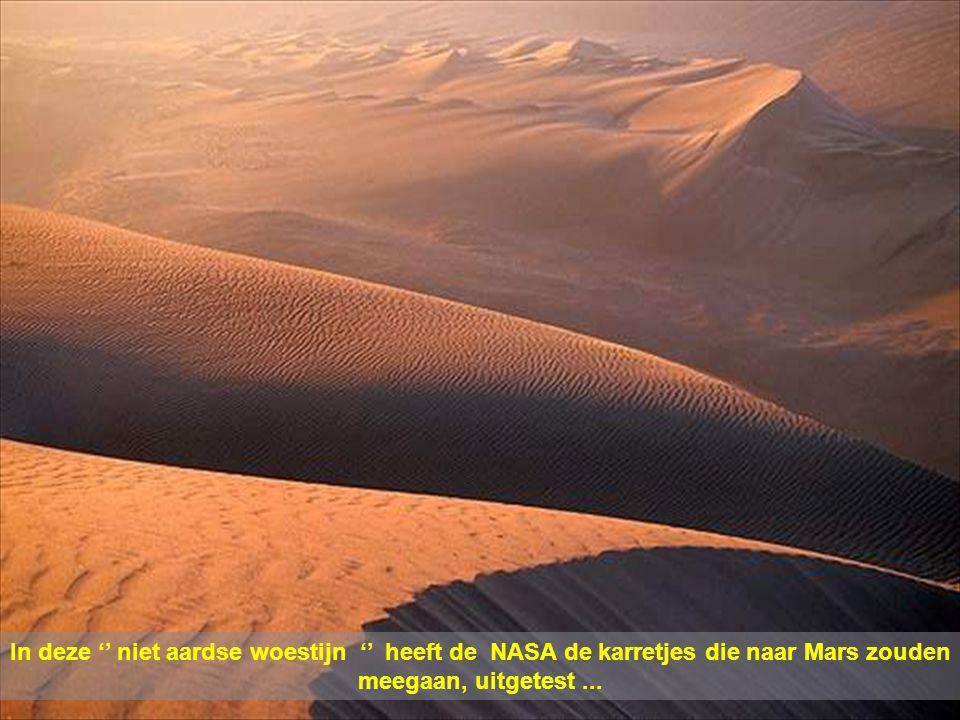 De Atacama woestijn is'n vulkanisch gebied, en vormt de grens tussen Chili, Bolivie en Argentinie. Over de 6.000 m. lengte van vulkanen, liggen met gr