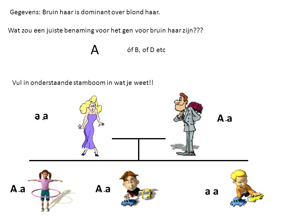 Gegevens: Bruin haar is dominant over blond haar. Wat zou een juiste benaming voor het gen voor bruin haar zijn??? A óf B, of D etc Vul in onderstaand