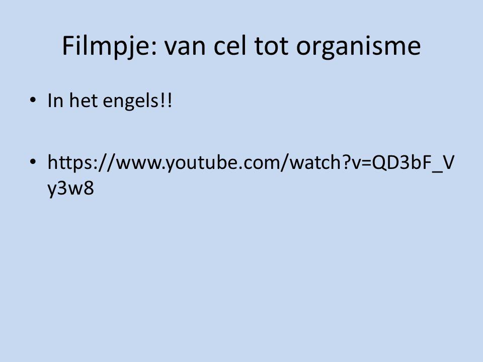 Filmpje: van cel tot organisme In het engels!! https://www.youtube.com/watch?v=QD3bF_V y3w8