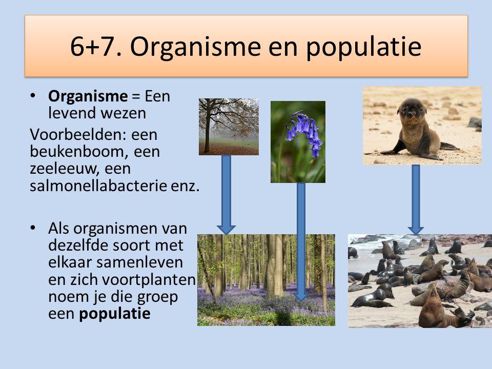 6+7. Organisme en populatie Organisme = Een levend wezen Voorbeelden: een beukenboom, een zeeleeuw, een salmonellabacterie enz. Als organismen van dez