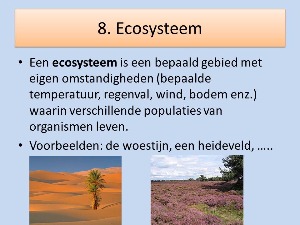 8. Ecosysteem Een ecosysteem is een bepaald gebied met eigen omstandigheden (bepaalde temperatuur, regenval, wind, bodem enz.) waarin verschillende po