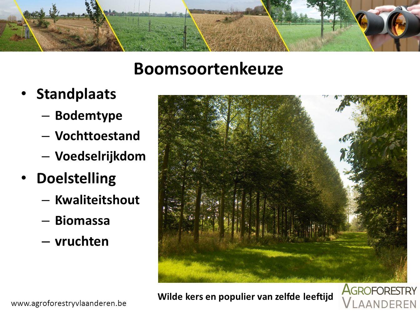 www.agroforestryvlaanderen.be Boomsoortenkeuze Standplaats – Bodemtype – Vochttoestand – Voedselrijkdom Doelstelling – Kwaliteitshout – Biomassa – vru