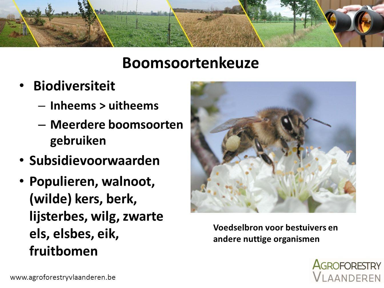 www.agroforestryvlaanderen.be Plantsoen Kwaliteitsvol.