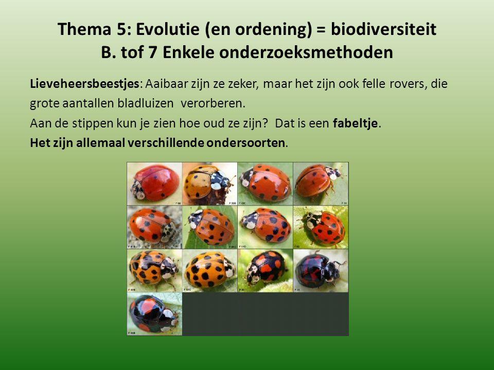 Thema 5: Evolutie (en ordening) = biodiversiteit B. tof 7 Enkele onderzoeksmethoden Lieveheersbeestjes: Aaibaar zijn ze zeker, maar het zijn ook felle