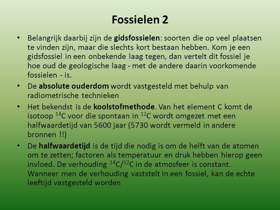 Fossielen 2 Belangrijk daarbij zijn de gidsfossielen: soorten die op veel plaatsen te vinden zijn, maar die slechts kort bestaan hebben.