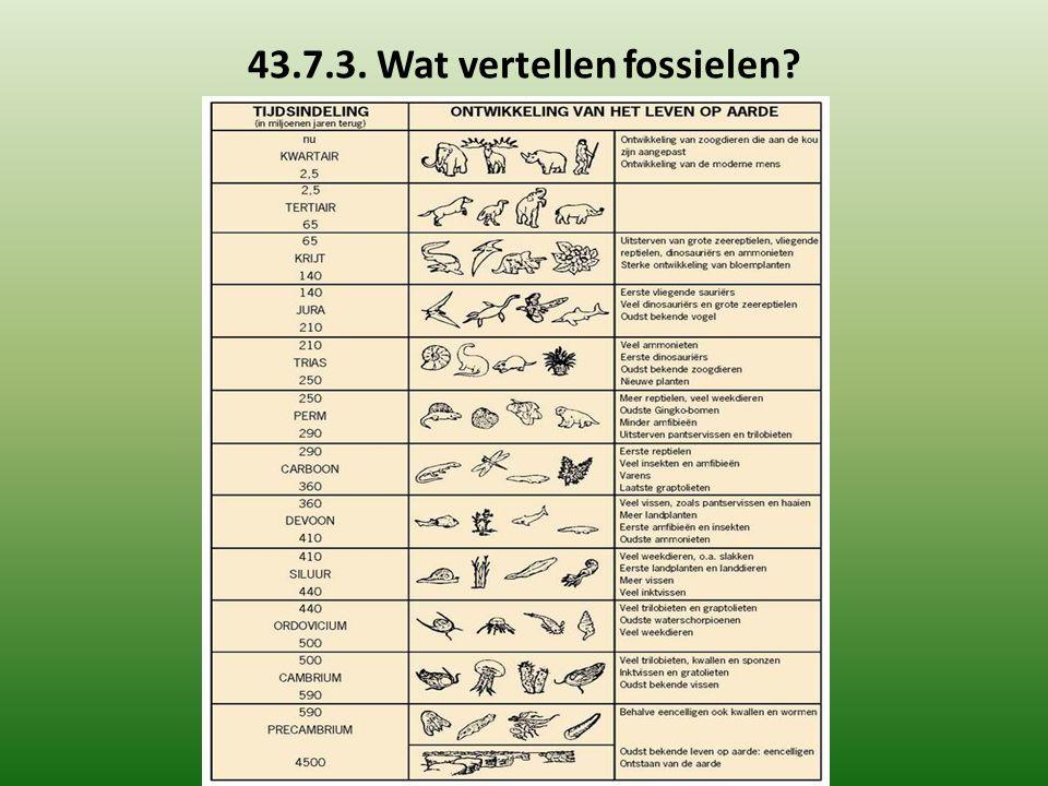 43.7.3. Wat vertellen fossielen?