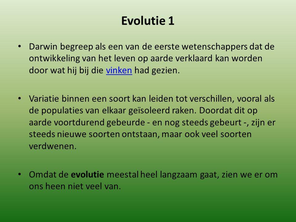 Evolutie 1 Darwin begreep als een van de eerste wetenschappers dat de ontwikkeling van het leven op aarde verklaard kan worden door wat hij bij die vinken had gezien.vinken Variatie binnen een soort kan leiden tot verschillen, vooral als de populaties van elkaar geïsoleerd raken.