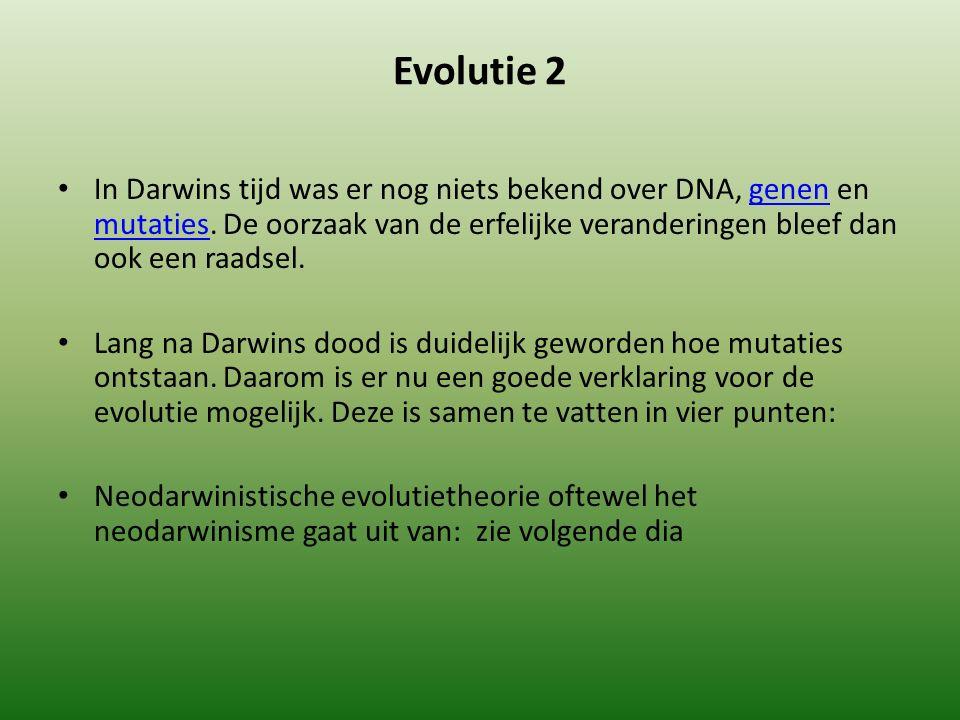 Evolutie 2 In Darwins tijd was er nog niets bekend over DNA, genen en mutaties.