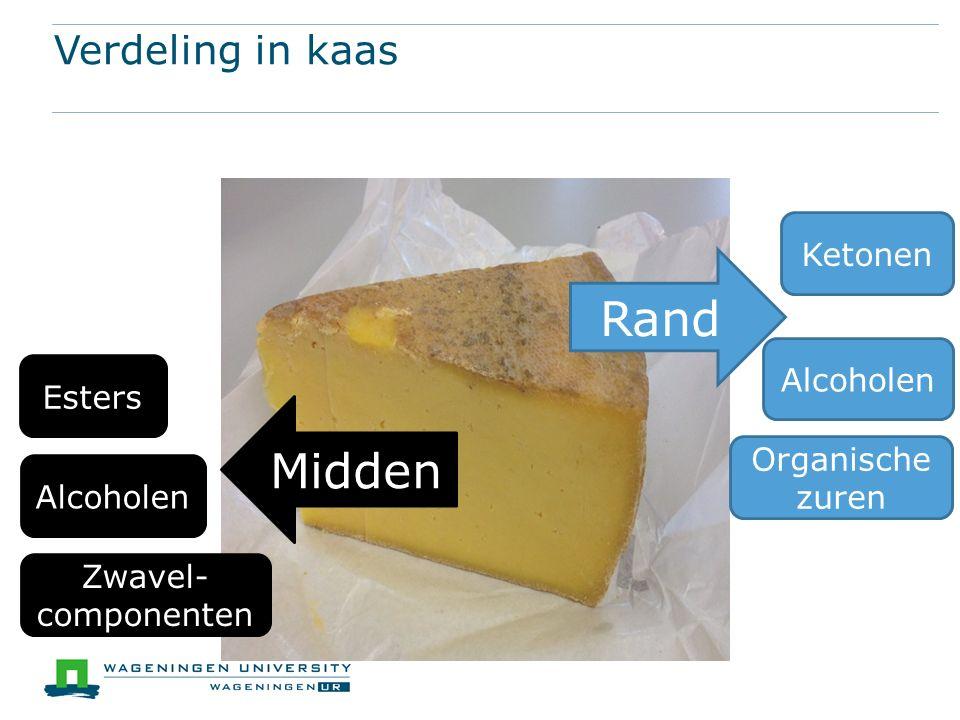 Verdeling in kaas Rand Ketonen Organische zuren Alcoholen Midden Esters Zwavel- componenten Alcoholen