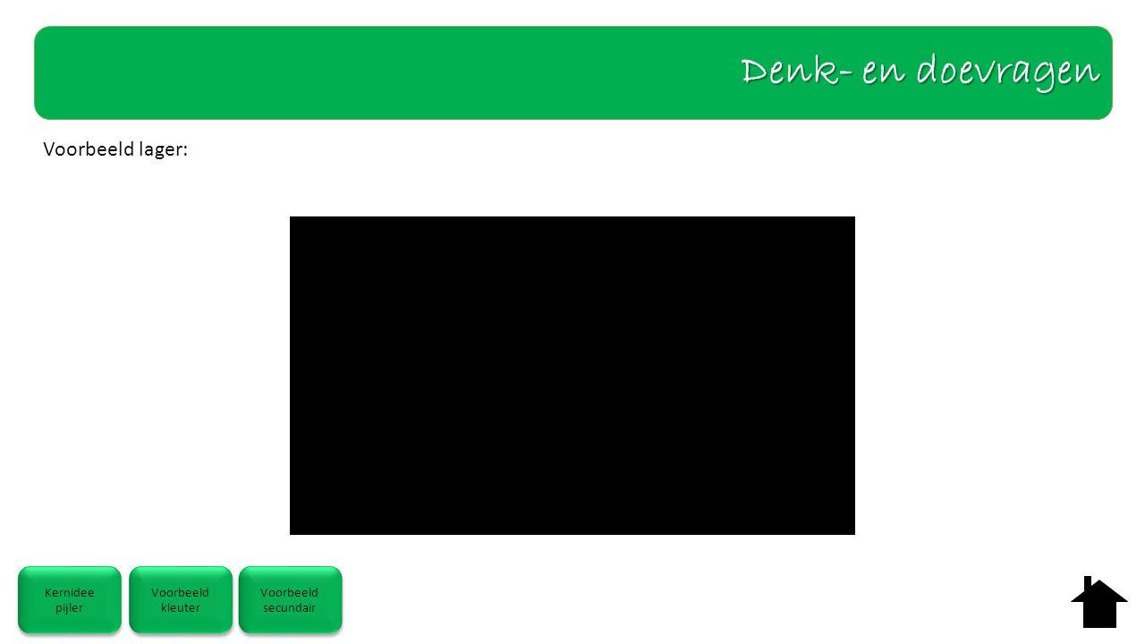 Voorbeeld lager: Denk- en doevragen Kernidee pijler Kernidee pijler Voorbeeld kleuter Voorbeeld kleuter Voorbeeld secundair Voorbeeld secundair