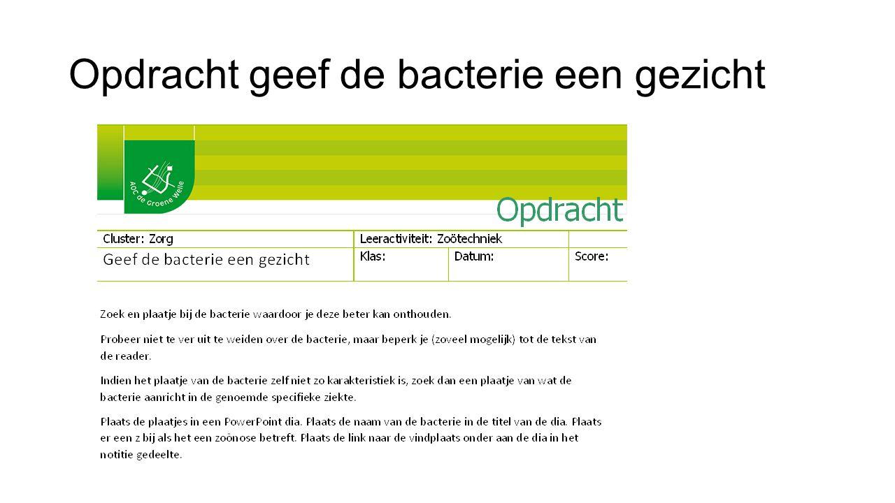 Opdracht geef de bacterie een gezicht