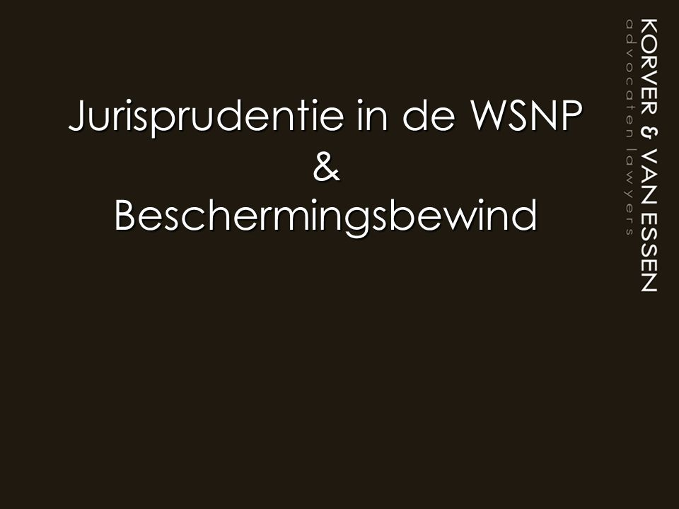 Jurisprudentie in de WSNP & Beschermingsbewind
