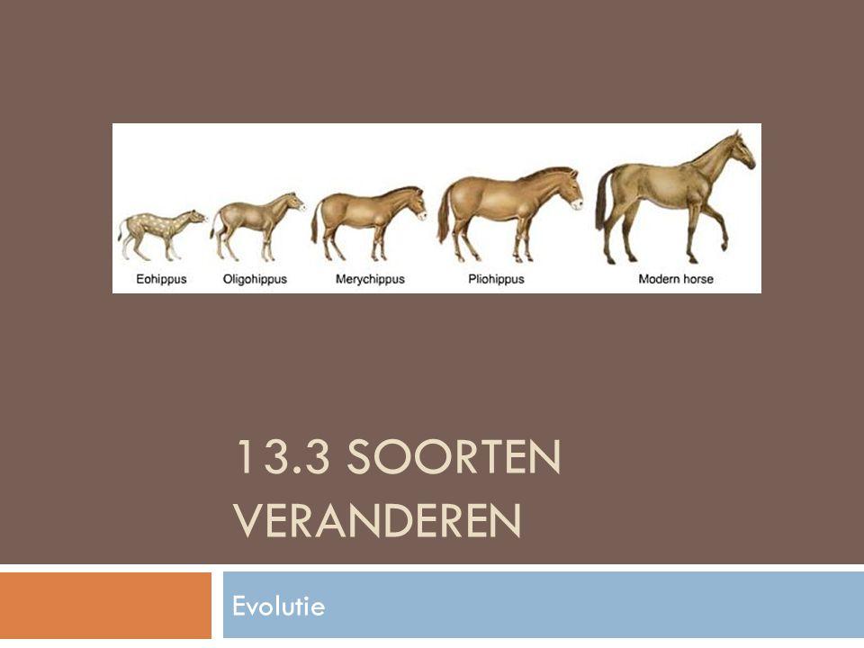 13.3 SOORTEN VERANDEREN Evolutie