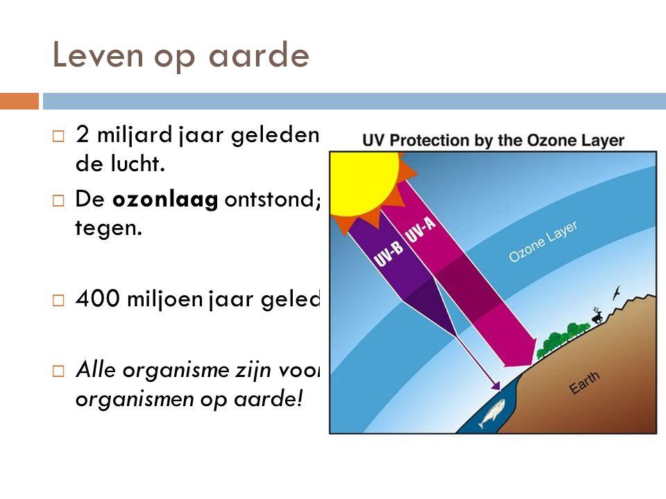 Leven op aarde  2 miljard jaar geleden steeg de hoeveelheid O2 in de lucht.