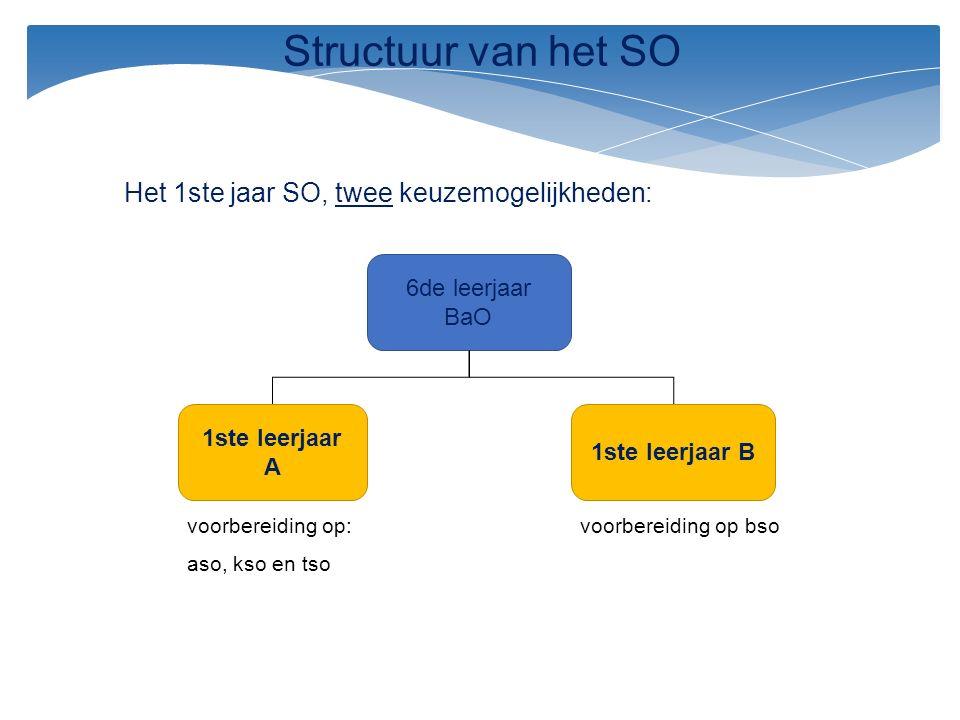 Het 1ste jaar SO, twee keuzemogelijkheden: 6de leerjaar BaO 1ste leerjaar B 1ste leerjaar A voorbereiding op: aso, kso en tso voorbereiding op bso Str