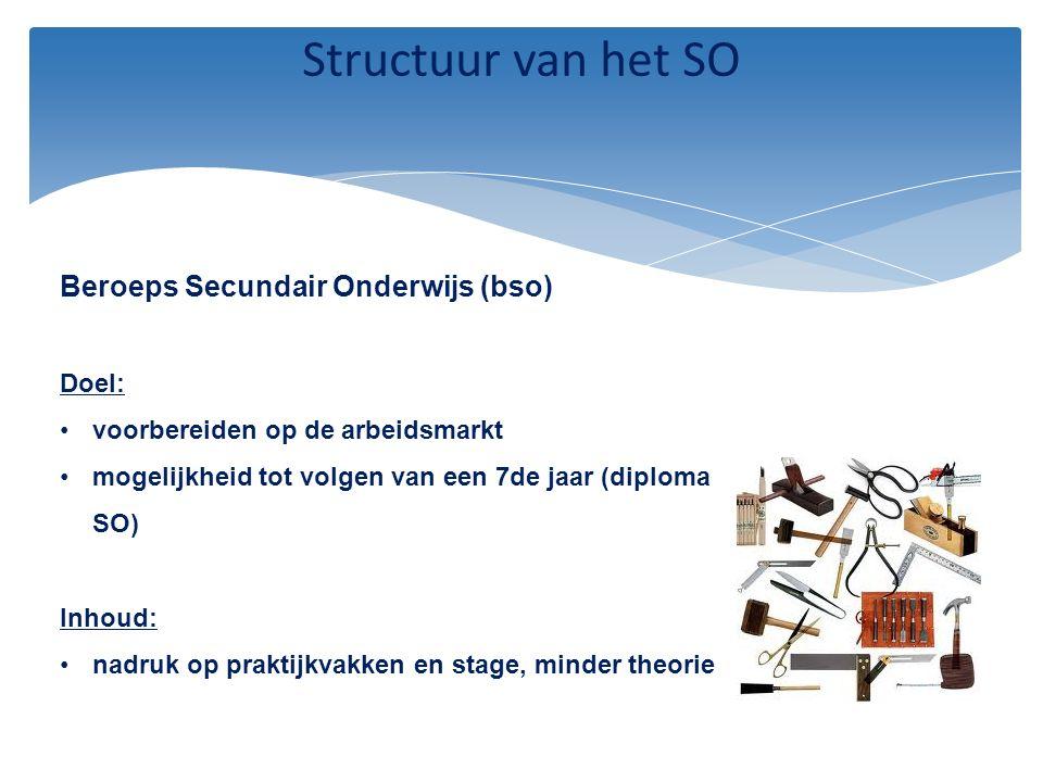 Structuur van het SO Beroeps Secundair Onderwijs (bso) Doel: voorbereiden op de arbeidsmarkt mogelijkheid tot volgen van een 7de jaar (diploma SO) Inh