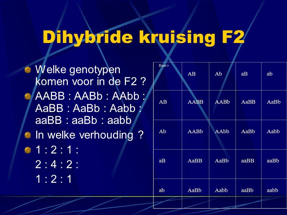 Dihybride kruising F2 Welke genotypen komen voor in de F2 .