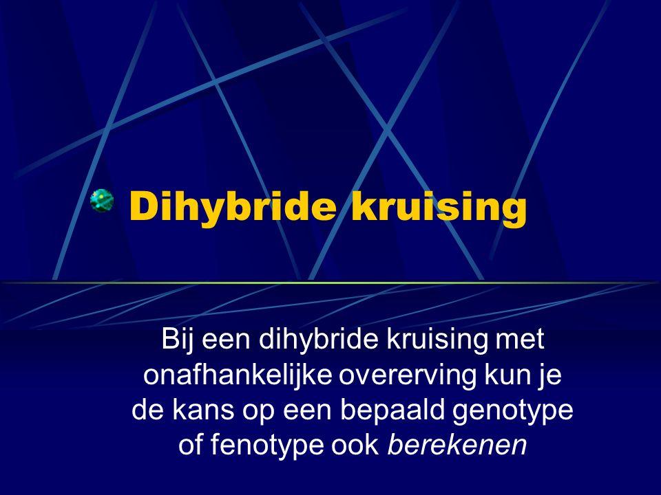 Dihybride kruising Bij een dihybride kruising met onafhankelijke overerving kun je de kans op een bepaald genotype of fenotype ook berekenen