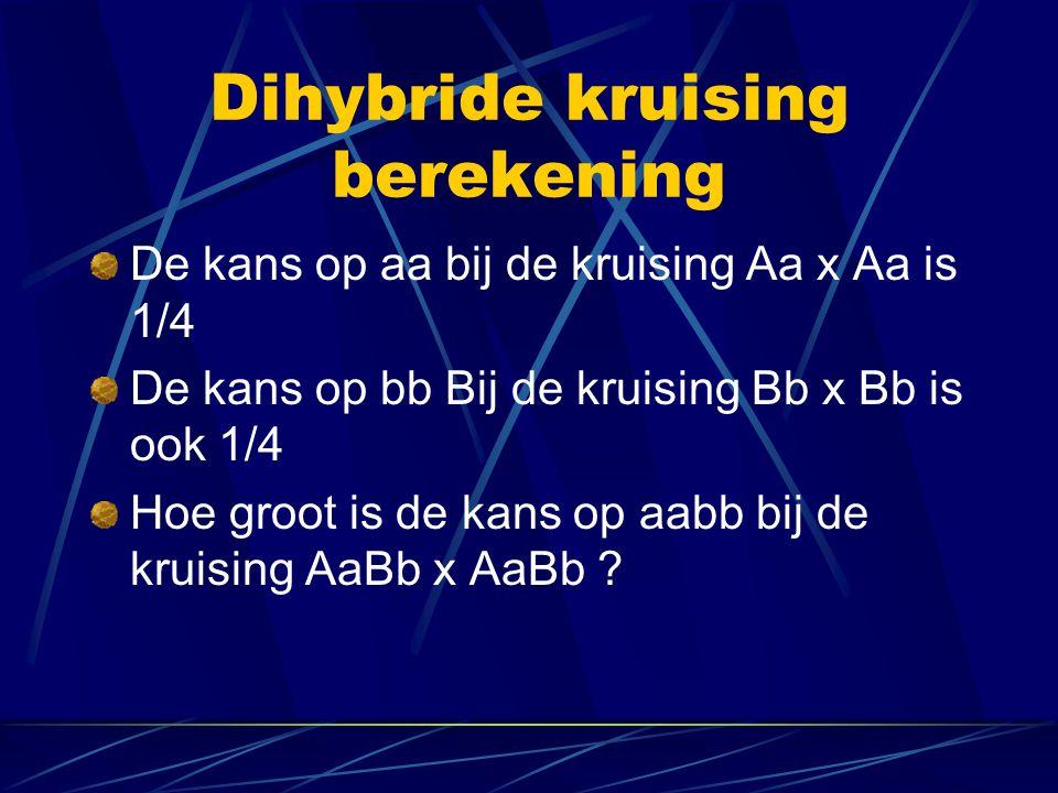 Dihybride kruising berekening De kans op aa bij de kruising Aa x Aa is 1/4 De kans op bb Bij de kruising Bb x Bb is ook 1/4 Hoe groot is de kans op aabb bij de kruising AaBb x AaBb ?