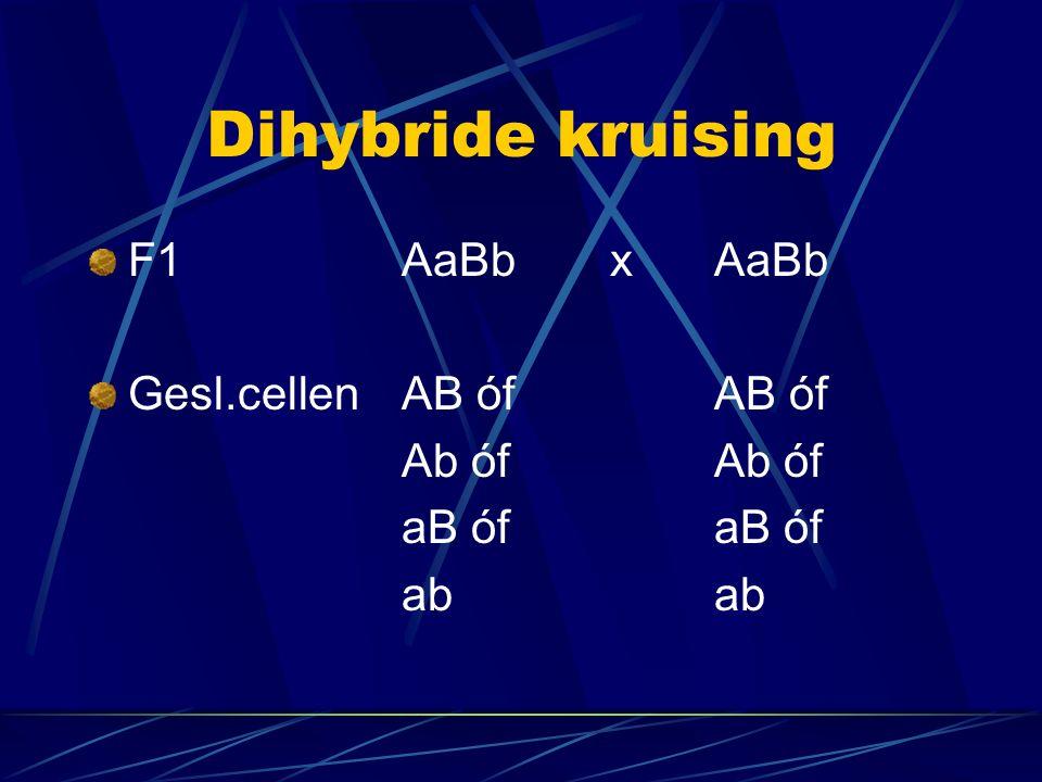 Dihybride kruising F1AaBbxAaBb Gesl.cellenAB ófAB ófAb ófaB ófab