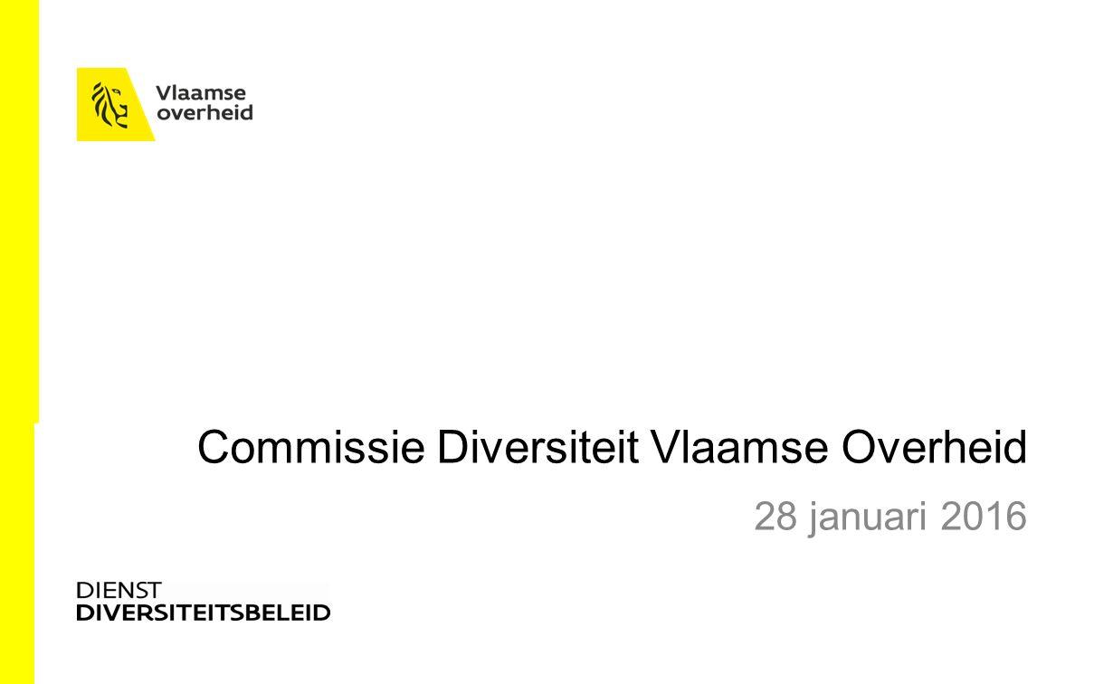 Commissie Diversiteit Vlaamse Overheid 28 januari 2016