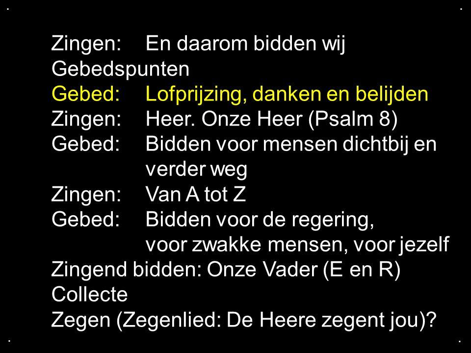 .... Zingen: En daarom bidden wij Gebedspunten Gebed: Lofprijzing, danken en belijden Zingen: Heer. Onze Heer (Psalm 8) Gebed: Bidden voor mensen dich