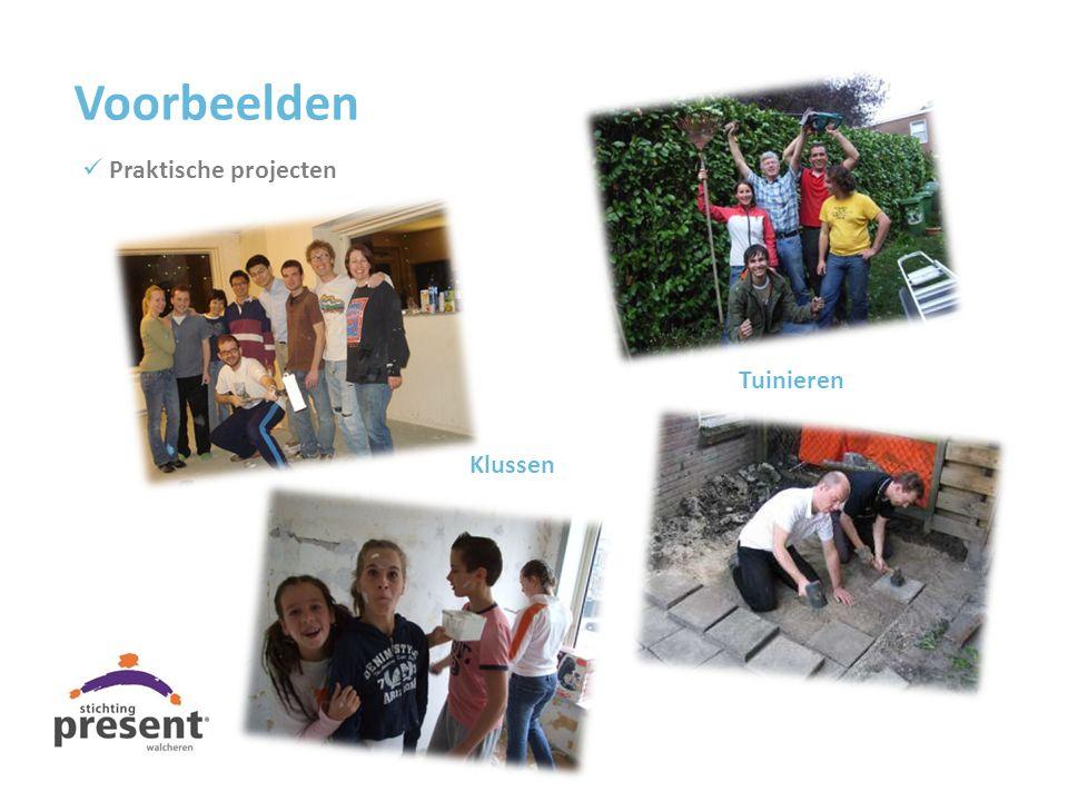 Klussen Tuinieren Voorbeelden Praktische projecten