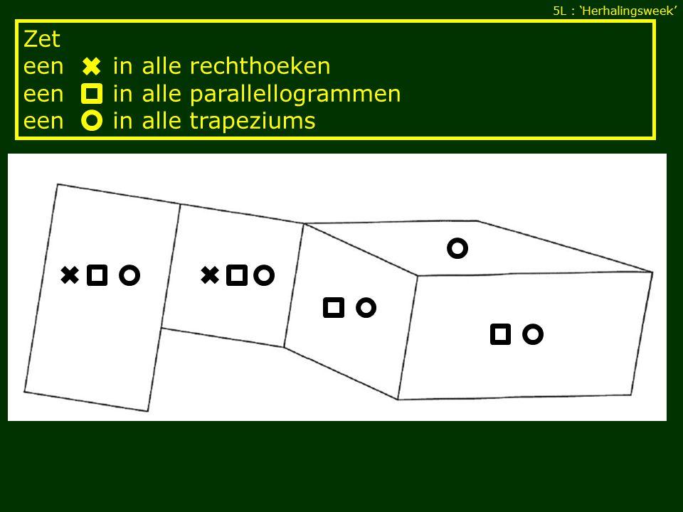 5L : 'Herhalingsweek' Zet een in alle rechthoeken een in alle parallellogrammen een in alle trapeziums