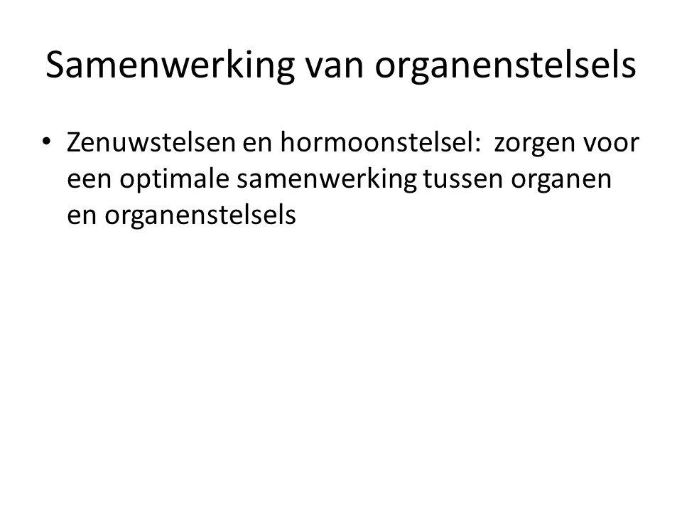 Samenwerking van organenstelsels Zenuwstelsen en hormoonstelsel: zorgen voor een optimale samenwerking tussen organen en organenstelsels
