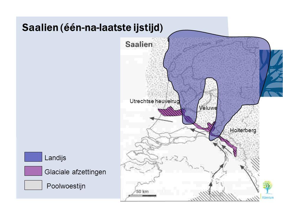 Saalien (één-na-laatste ijstijd) Landijs Glaciale afzettingen Poolwoestijn Utrechtse heuvelrug Veluwe Holterberg