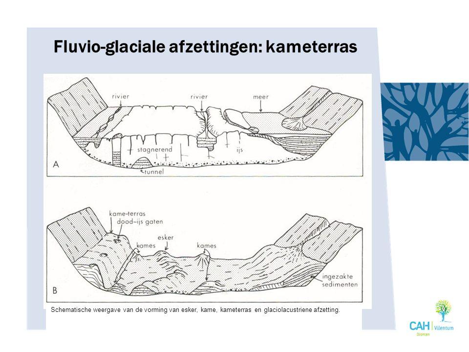 Fluvio-glaciale afzettingen: kameterras Schematische weergave van de vorming van esker, kame, kameterras en glaciolacustriene afzetting.