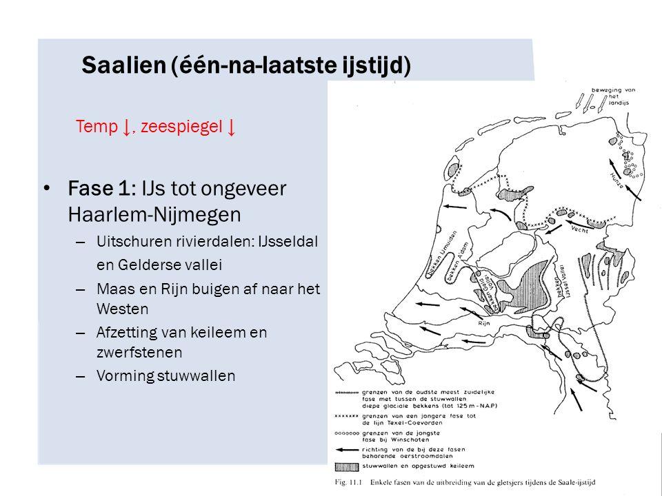 Saalien (één-na-laatste ijstijd) Temp ↓, zeespiegel ↓ Fase 1: IJs tot ongeveer Haarlem-Nijmegen – Uitschuren rivierdalen: IJsseldal en Gelderse vallei – Maas en Rijn buigen af naar het Westen – Afzetting van keileem en zwerfstenen – Vorming stuwwallen