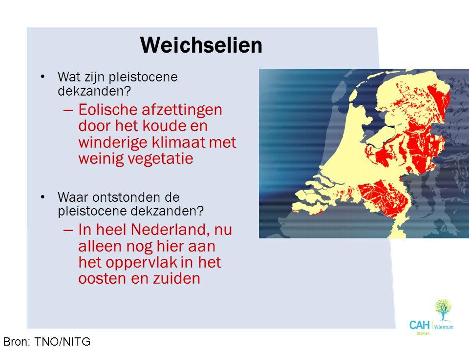 Weichselien Wat zijn pleistocene dekzanden.