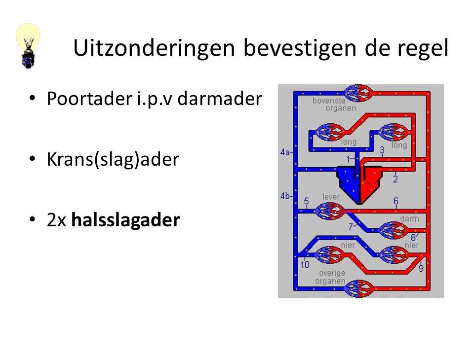 Uitzonderingen bevestigen de regel Poortader i.p.v darmader Krans(slag)ader 2x halsslagader