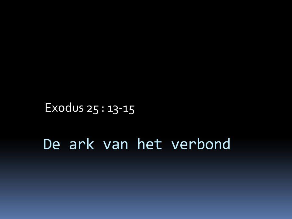 De ark van het verbond Exodus 25 : 13-15