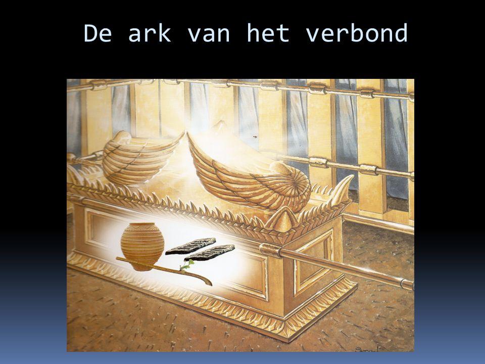 De ark van het verbond