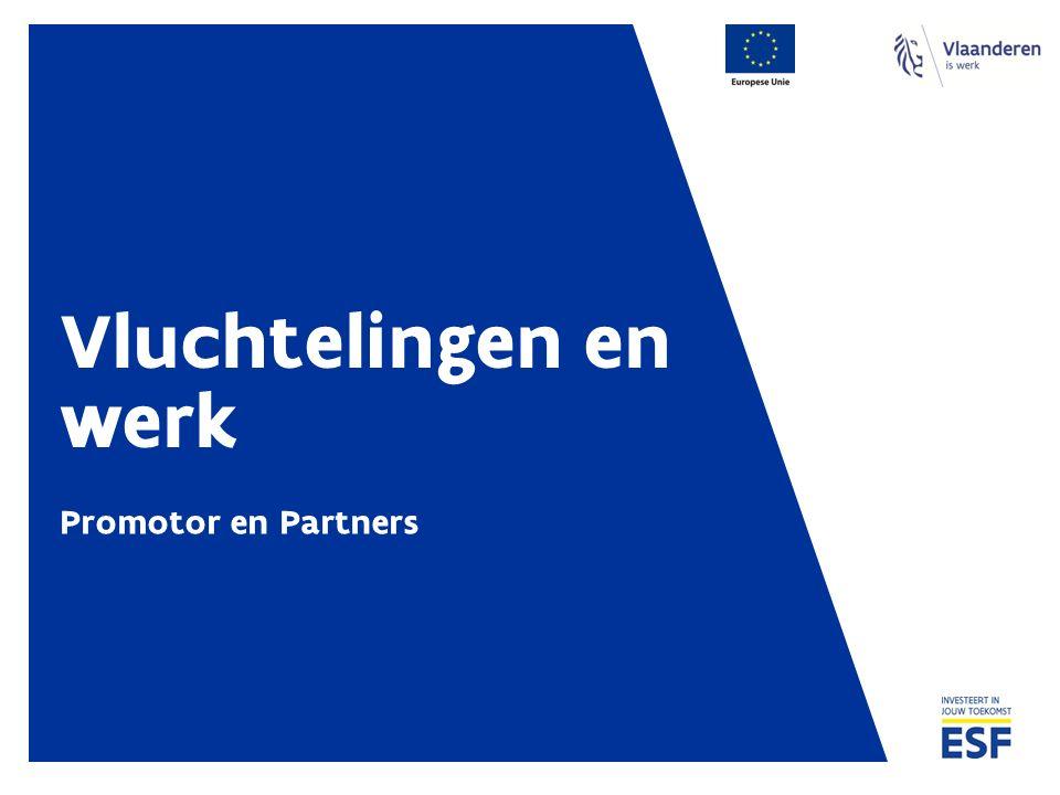 Vluchtelingen en werk Promotor en Partners