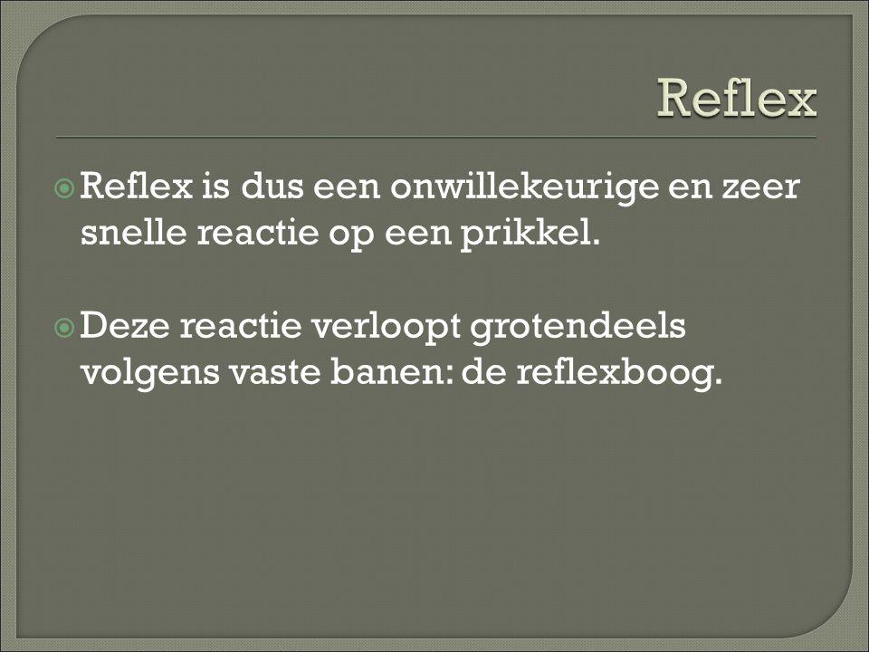  Reflex is dus een onwillekeurige en zeer snelle reactie op een prikkel.  Deze reactie verloopt grotendeels volgens vaste banen: de reflexboog.